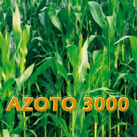 AZOTO 3000
