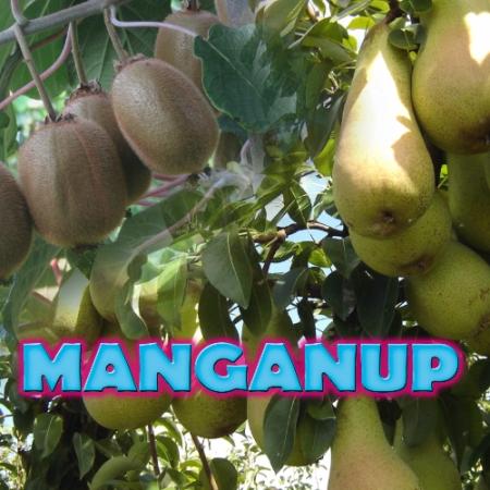 MANGANUP