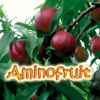 AMINOFRUIT