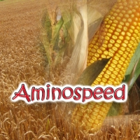 AMINOSPEED