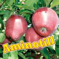 AMINOTILL