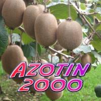 AZOTIN 2000