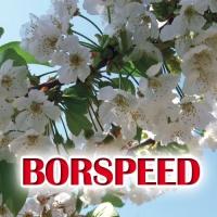 BORSPEED