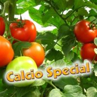 CALCIO SPECIAL