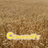 COMODYT
