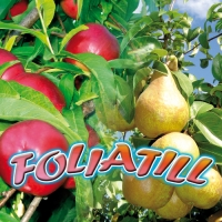 FOLIATILL