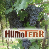 HUMOTERR