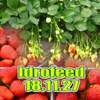 IDROFEED 18-11-27