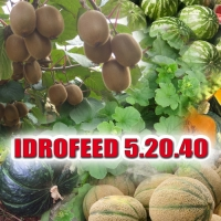 IDROFEED 5-20-40