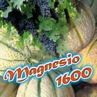MAGNESIO 1600