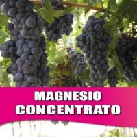 MAGNESIO CONCENTRATO