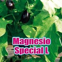 MAGNESIO SPECIAL L