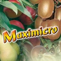 MAXIMICRO