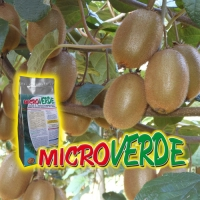 MICROVERDE
