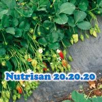 NUTRISAN 20-20-20