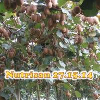 NUTRISAN 27-15-14