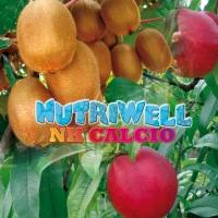 NUTRIWELL NK CALCIO
