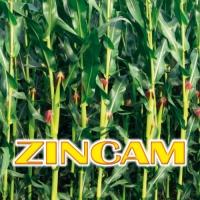 ZINCAM